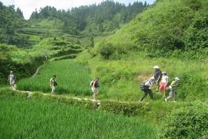 Tour photo of 3 Days 2 Nights Rice Terraces Li River hiking tour