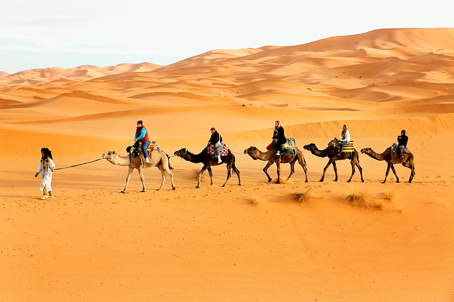 Tour photo of Tours and Vacations in Morocco
